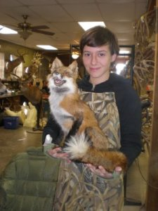 Insert your own joke about a fox here, but here's Becca with a fox she's worked on.